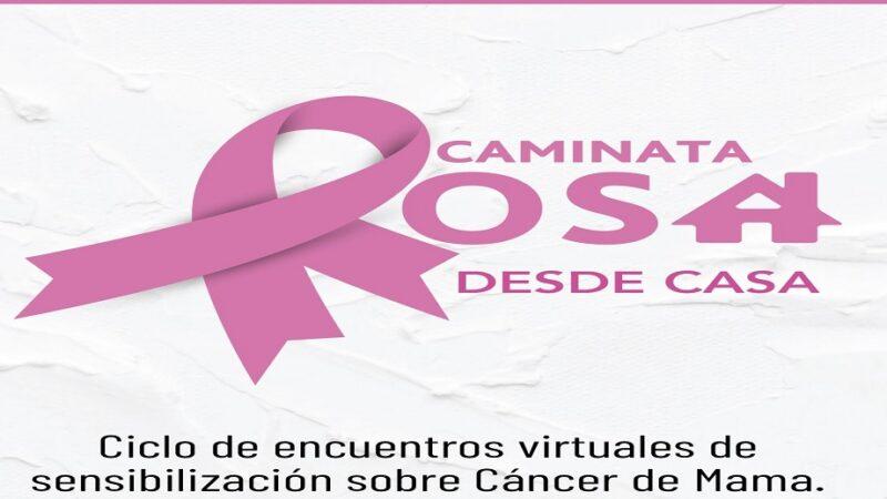 Conciencia rosa: ciclo de charlas y caminata virtual para sensibilizar sobre el cáncer de mama